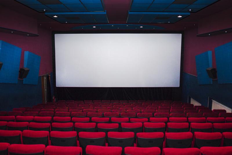 चलचित्र नचलेपछि खाली छन् सिंगल थिएटर,२० लाख कमाउने हल १० लाख घाटामा