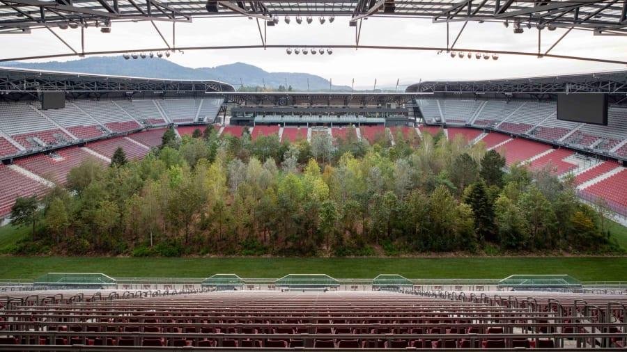 स्टेडियमको बीचमा किन रोपियो जङ्गल ?